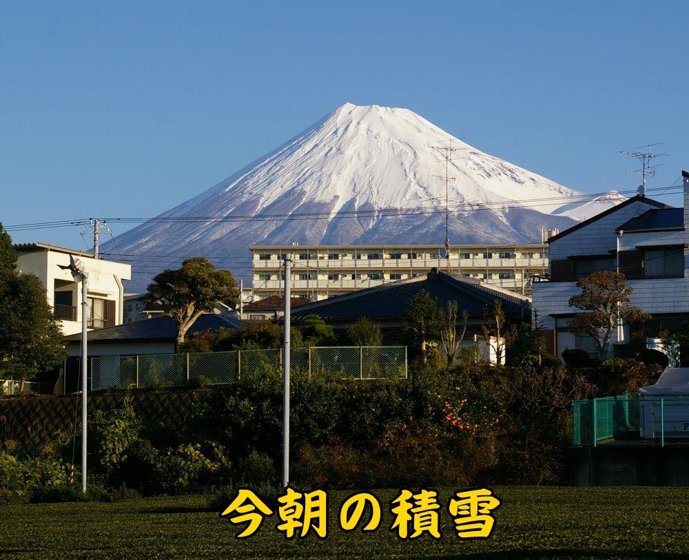 1fuji1116c1.jpg