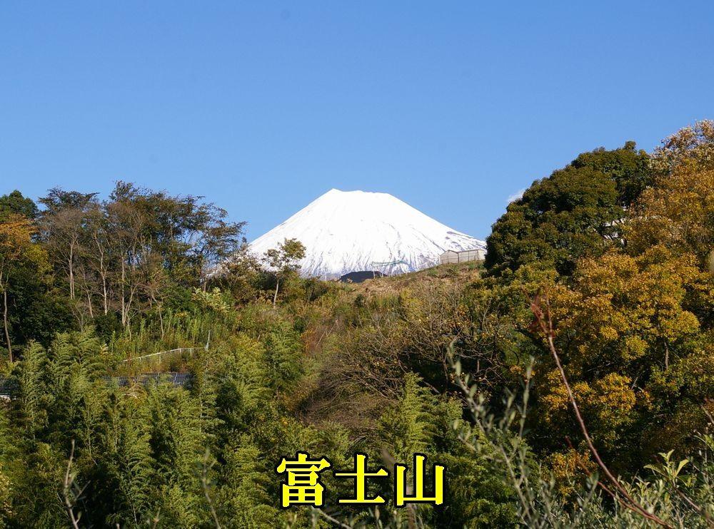 1fujisan1203c1.jpg