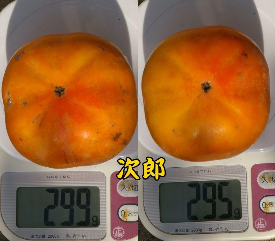 1jiro1105c1.jpg