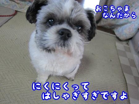 0426-02_20130426134227.jpg