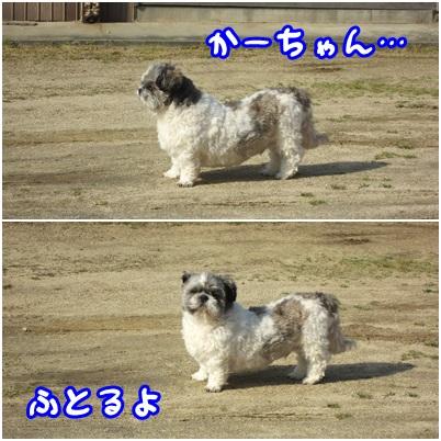 0501-01_20130501141550.jpg