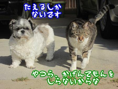0502-04_20130502144641.jpg
