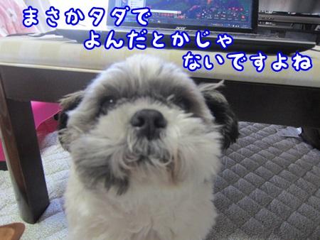 0507-03_20130507143640.jpg
