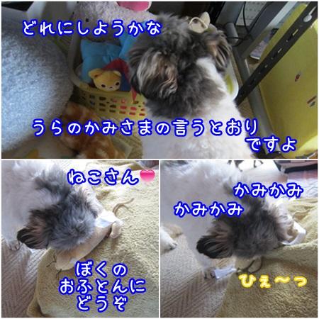 0509-03_20130509112955.jpg