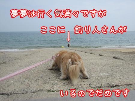 0516-02_20130516133421.jpg