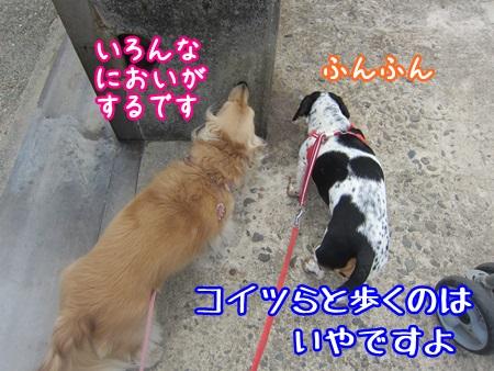 0516-04_20130516133425.jpg
