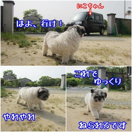0521-01_20130521211757.jpg