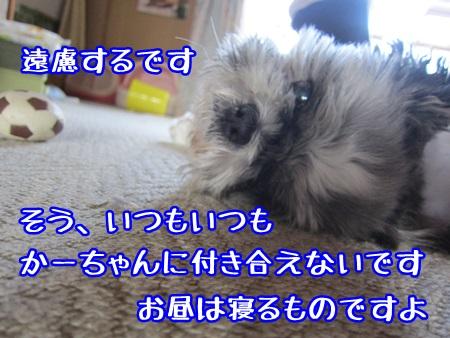 0522-01_20130522153536.jpg