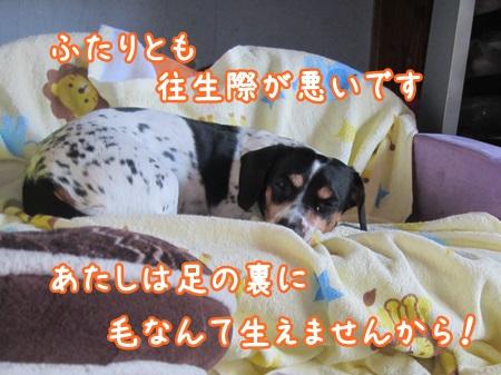 0522-03_20130522153540.jpg