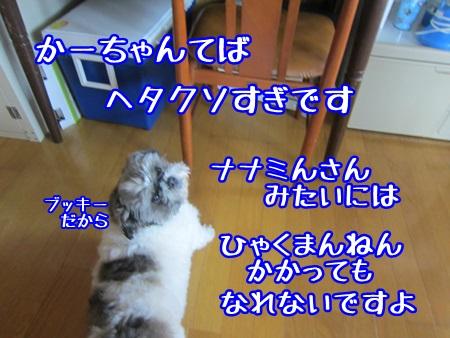 0523-01_20130523134311.jpg