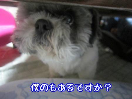 0526-03.jpg