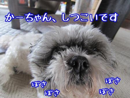 0530-04_20130530141041.jpg