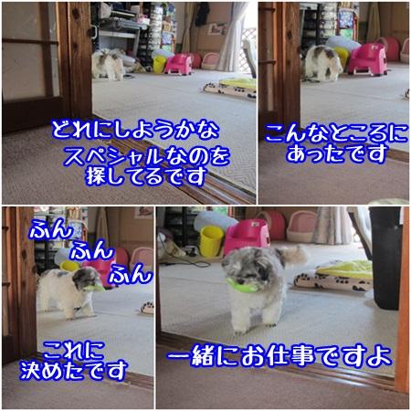0603-03_20130603201723.jpg