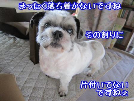 0627-03_20130627221749.jpg