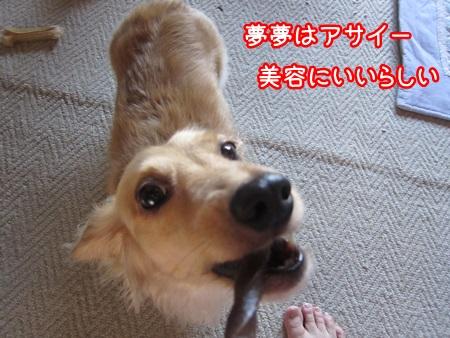 0812-04_20130812193359021.jpg