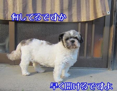 0916-06_20130916170700af0.jpg