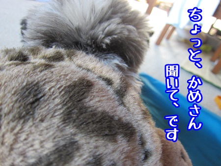 0924-05_20130924153126de0.jpg