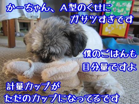 0924-06_2013092415312817f.jpg