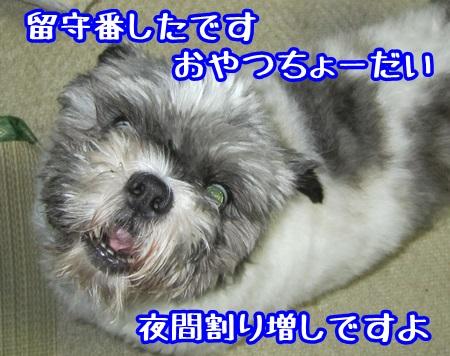 1005-04_201310052136357df.jpg