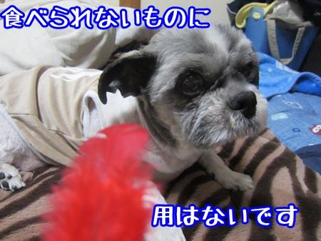 1015-04_201310151451183c3.jpg