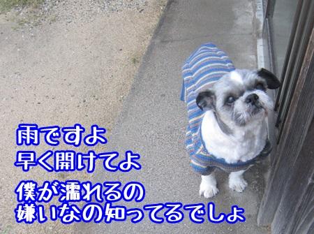 1019-03_20131019204045e4f.jpg