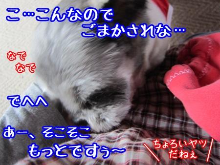 1022-03_20131022151435e7b.jpg