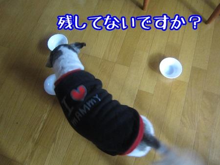 1024-03_2013102414041305e.jpg