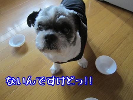 1024-05_20131024140451d2a.jpg