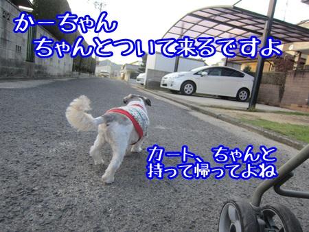 1029-07_20131029161101700.jpg