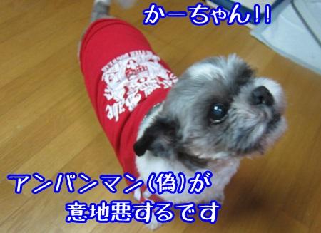1103-01_20131103201143639.jpg
