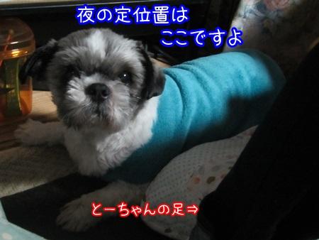 1109-03_20131109211753db0.jpg