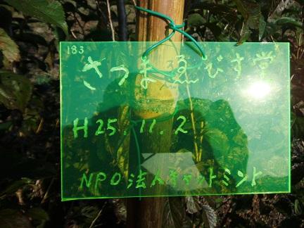 DSCF1658AA.jpg