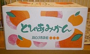 mikan@shizuoka02.jpg