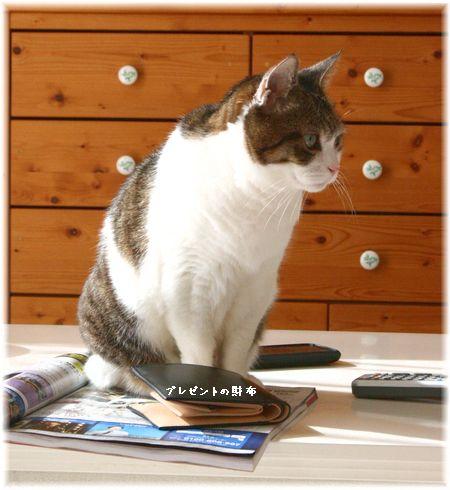 2014.1.27 相方の財布とスーちゃん