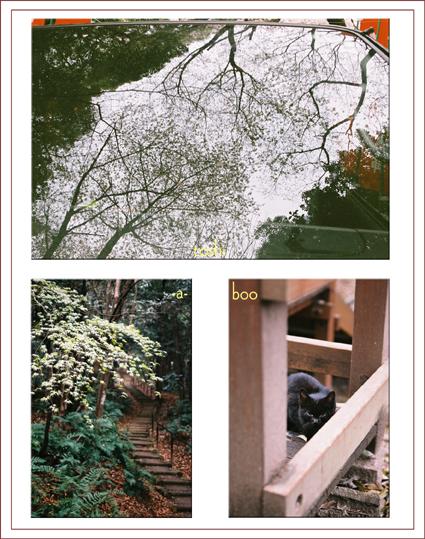 komakiyama_20130411182223.jpg