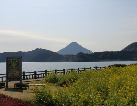 池田湖と開聞岳と菜の花畑