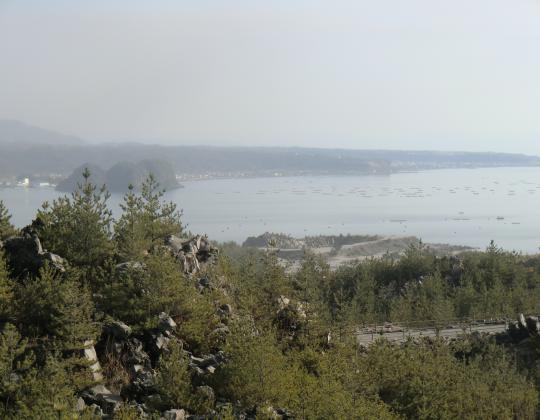 有村溶岩展望所から錦江湾