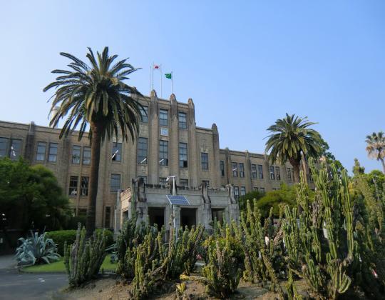 宮崎県庁とサボテン
