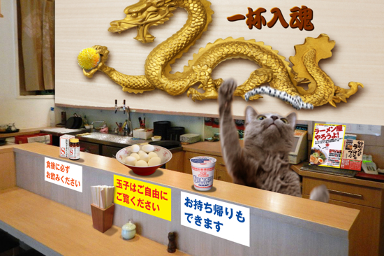 猫らーめん6