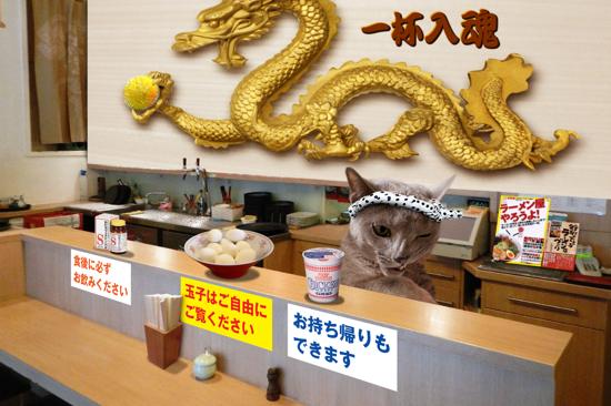 猫らーめん14