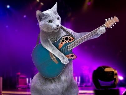 みどりギター