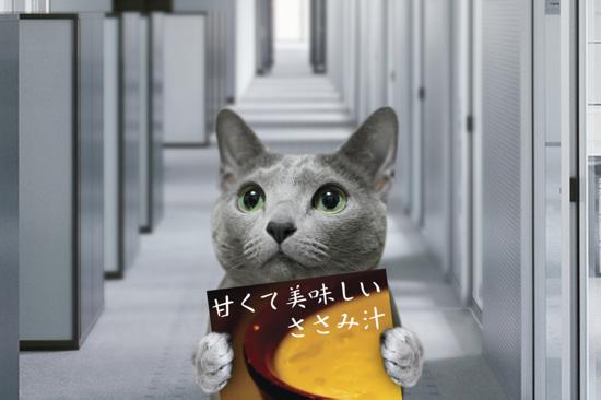 猫役所11