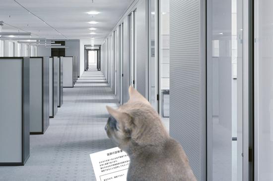 猫役所15