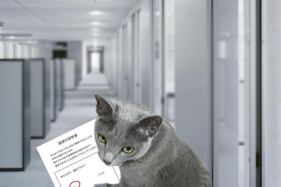 猫役所25