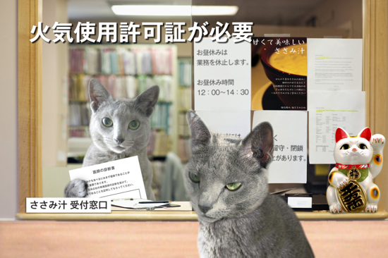 猫役所27