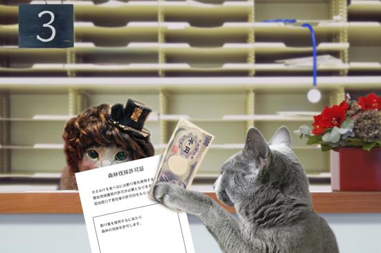 猫役所42