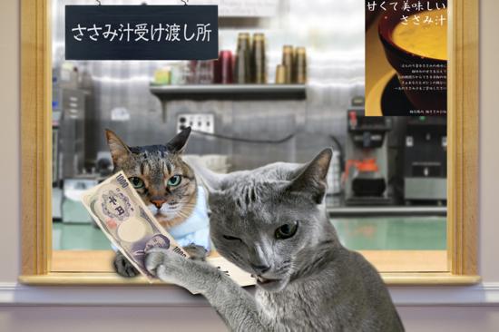 猫役所53