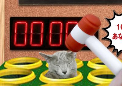 猫たたき20