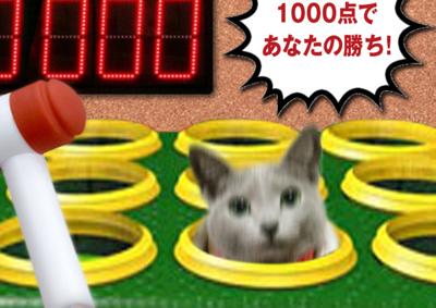猫たたき23