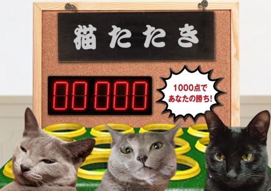 猫たたき32